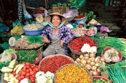 VIETNAM LUXURY CULINARY 8 DAYS
