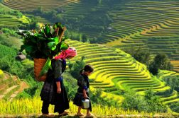 VIETNAM ADVENTURE TOUR 7 DAYS